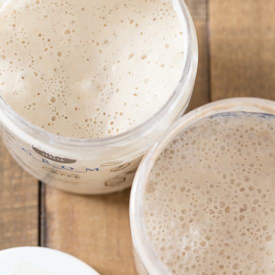 Open plastic jars showing sourdough starter inside.