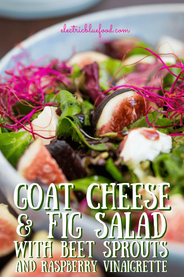 Fig and goat cheese salad with beet sprouts and raspberry vinaigrette